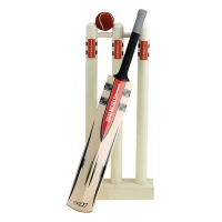 Mini Bat/Stumps & Ball Set